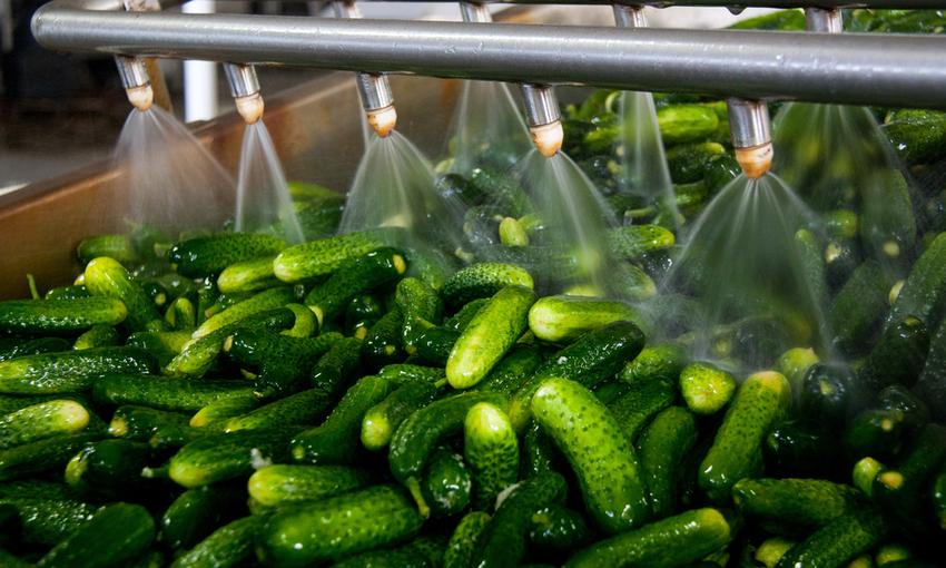 lavaggio verdura da confezionare