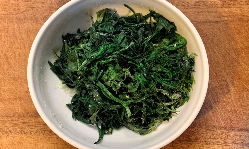 Artemisia erba