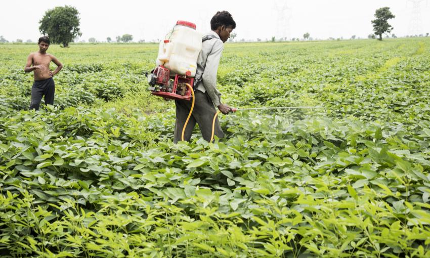 braccianti agricoli indiani