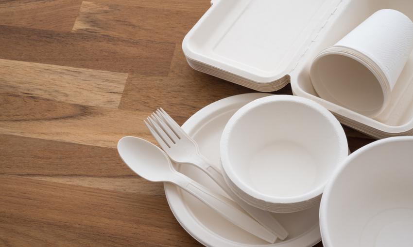 Piatti e bicchieri compostabili
