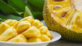 come cucinare jackfruit