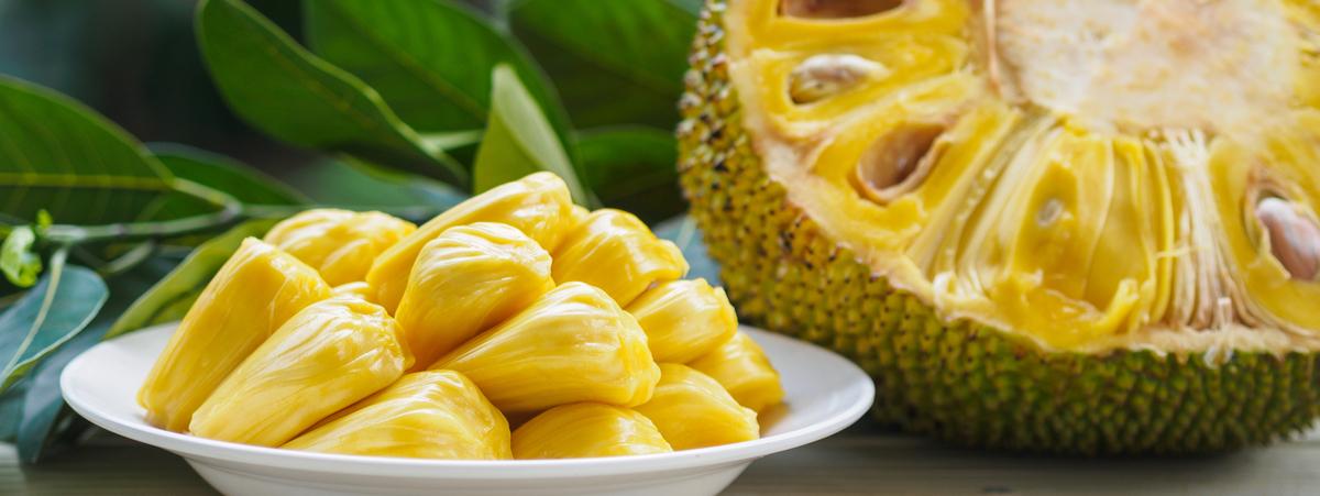 come cucinare il jackfruit 3 ricette vegetali da provare