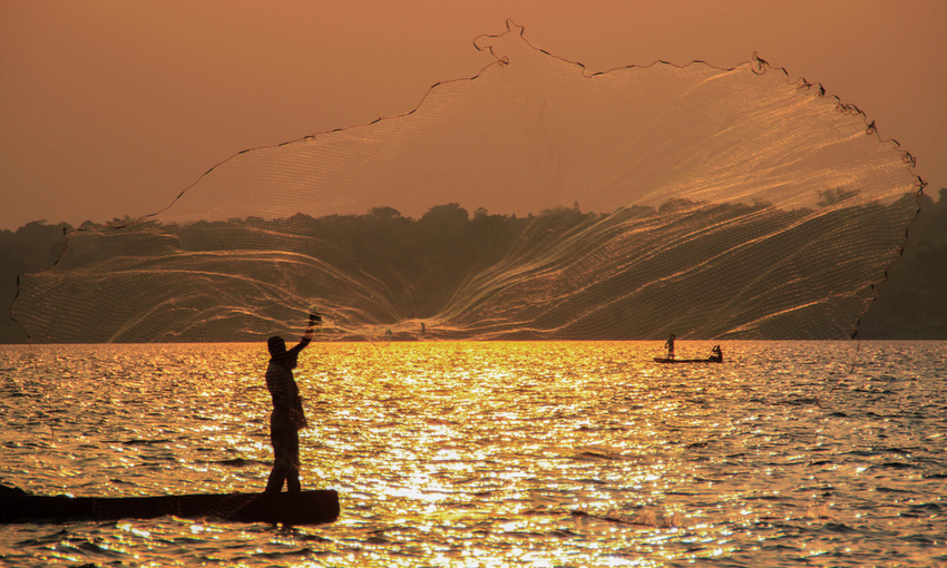 pesca persico africano