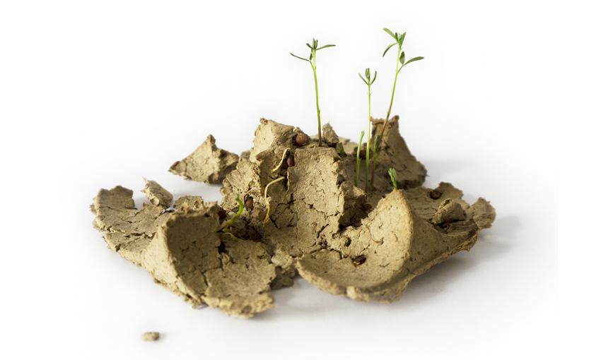 biodegrapack legumi