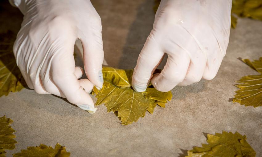 involtino foglie
