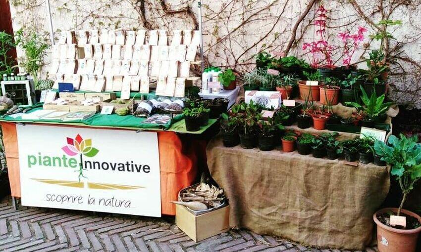 progetto piante innovative