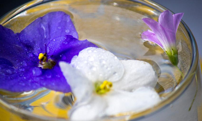 acqua aromatica