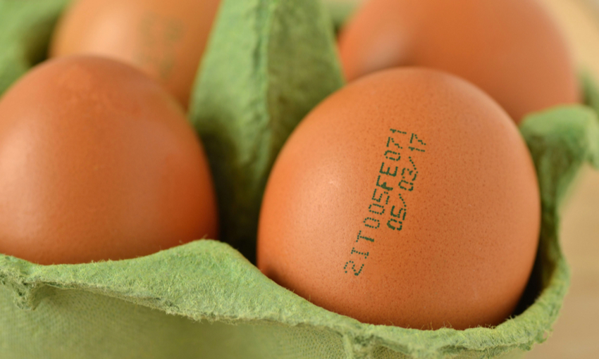 Data di scadenza uova