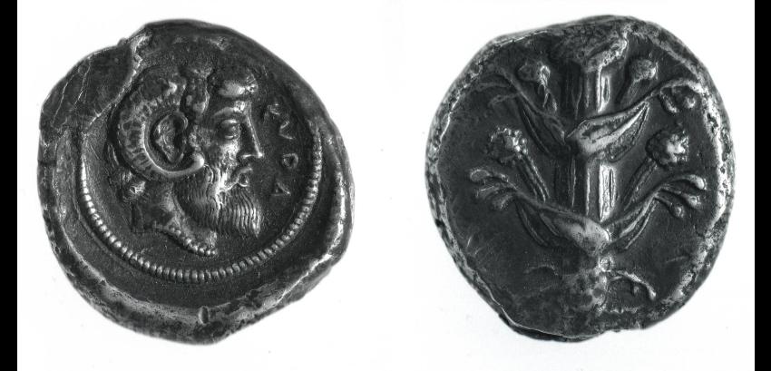 silfio moneta