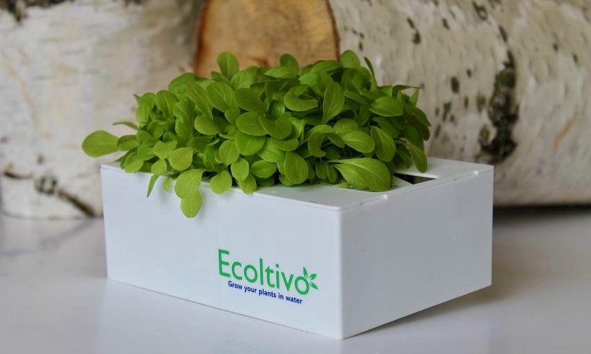 Ecoltivo orto idroponico