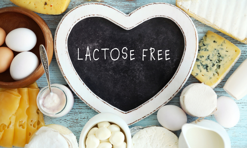 lactos free