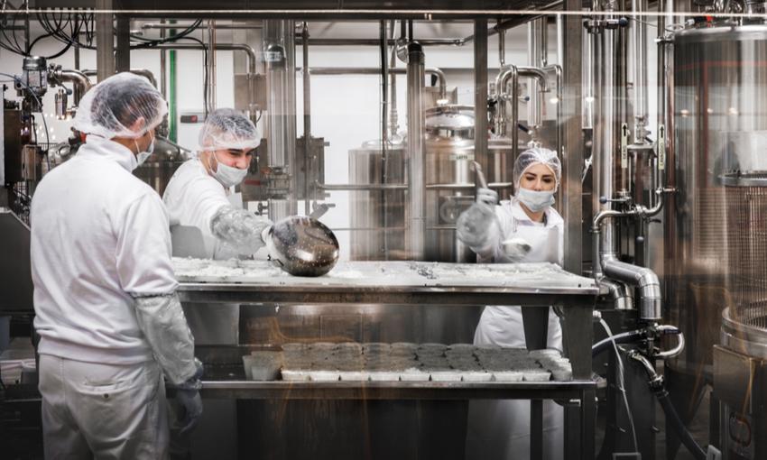 Norme di sicurezza filiera del formaggio