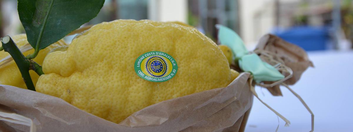 limone di amalfi