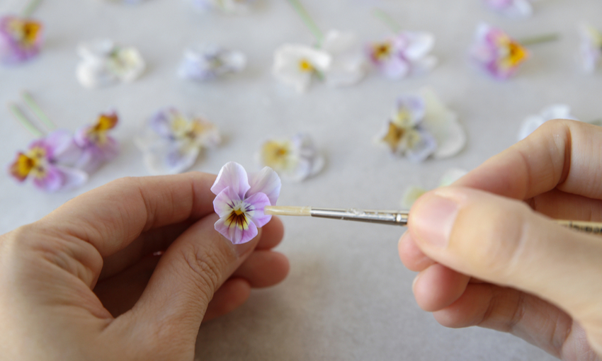 Vegan candied flowers o fiori zuccherati