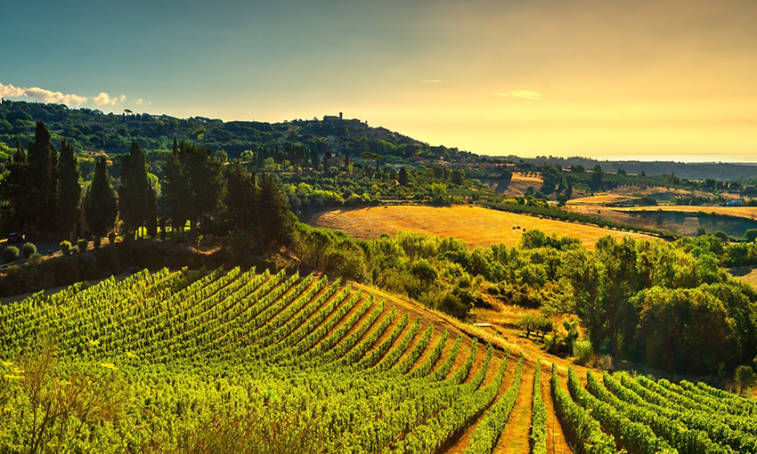 Friuli Venezia Giulia turismo enogastronomico