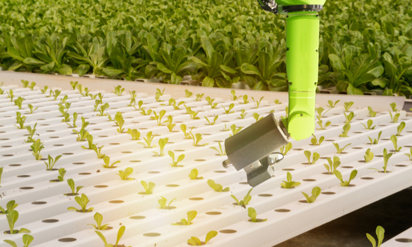 Robot agricoltura