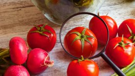 Microplastiche nei vegetali