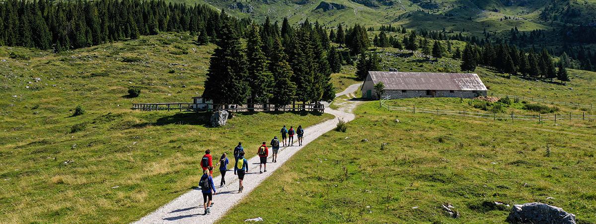 Provviste progetto trekking