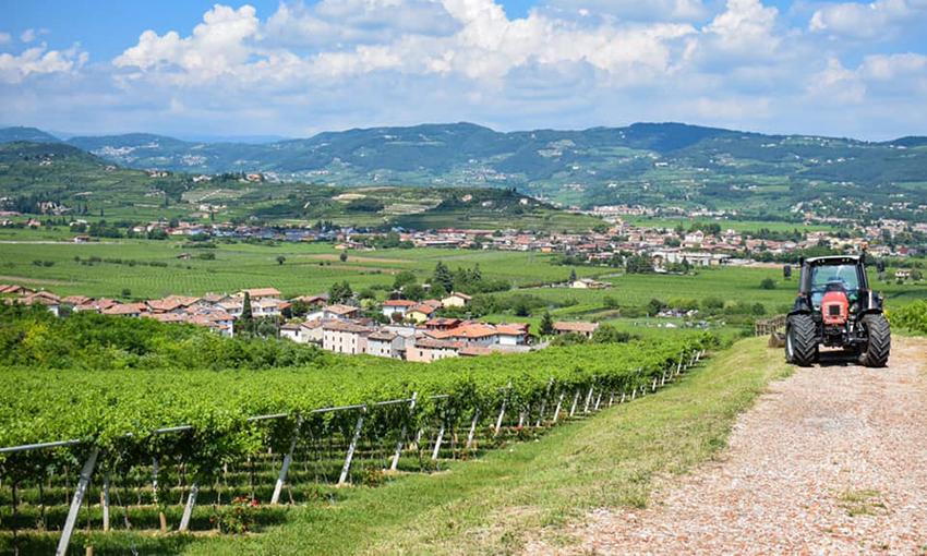 Valpolicella Veneto