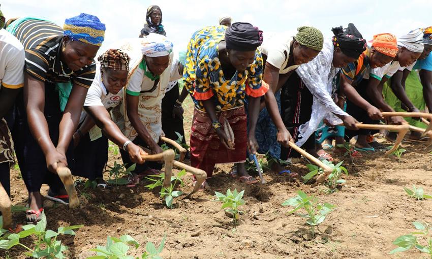 Agricoltori WFP