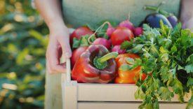 dieta bio e pesticidi