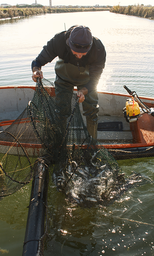 valesan valli da pesca