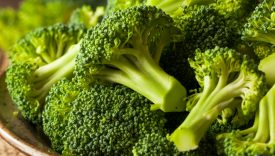broccoli proprieta