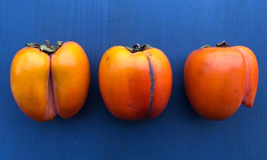 frutta e verdura bella dentro