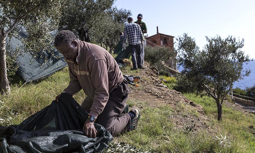 agricoltura sociale gorgona