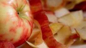 farina dagli scarti delle mele