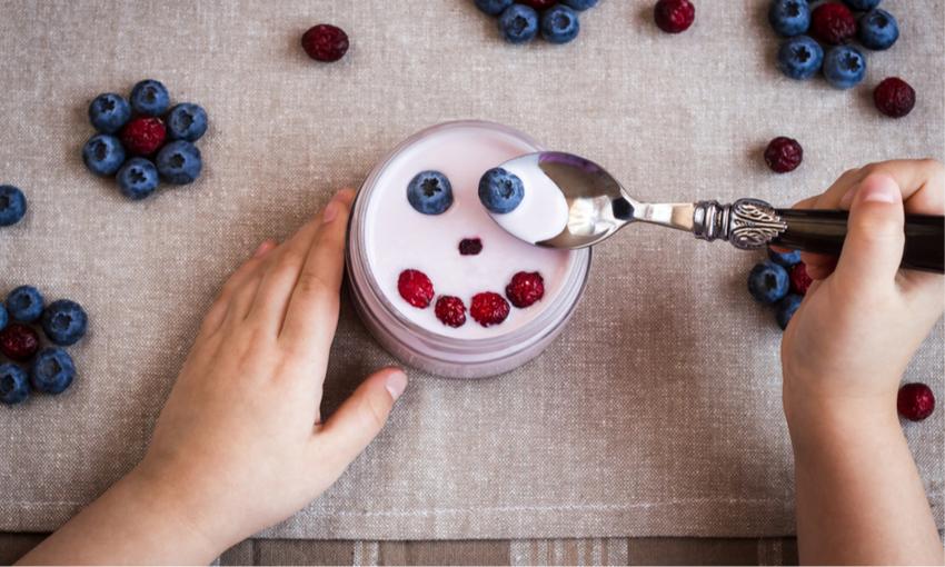 yogurt sano