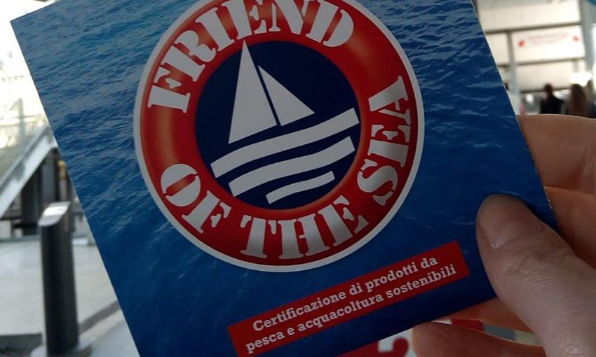 frienda of the sea