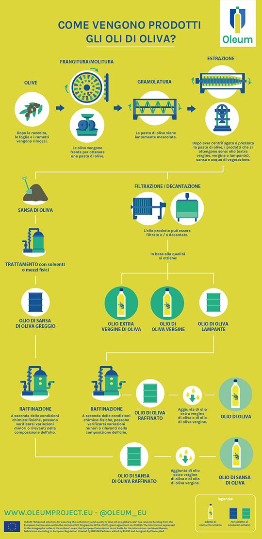 produzione olio infografica
