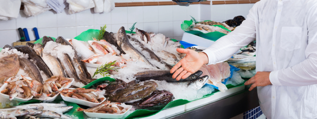 pesci esotici