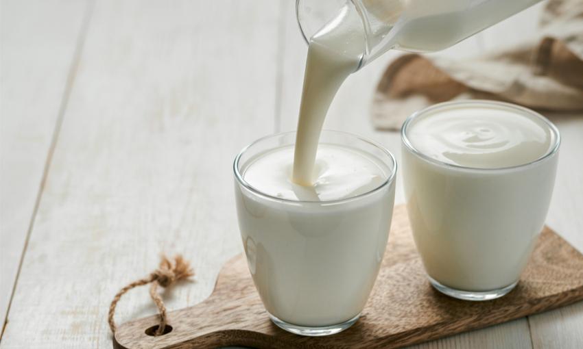 kefir e yogurt differenze