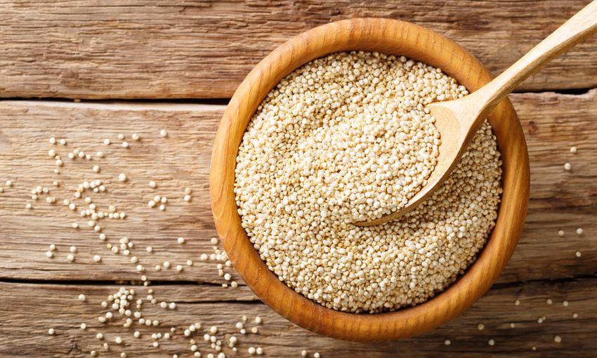 quinoa pseudocereale