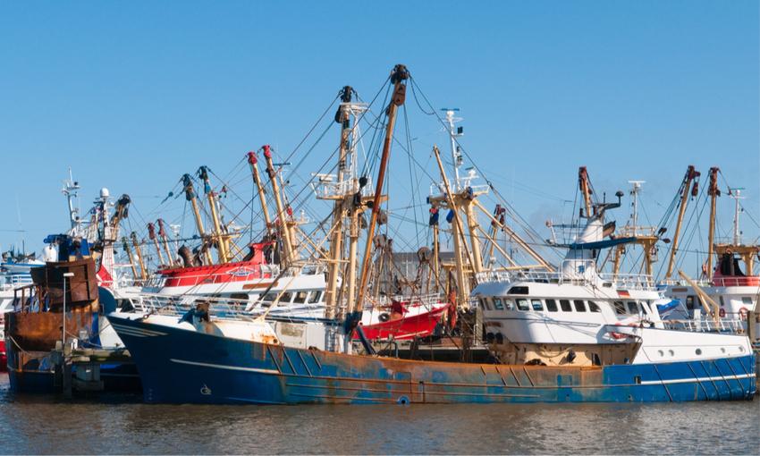 fermo pesca navi