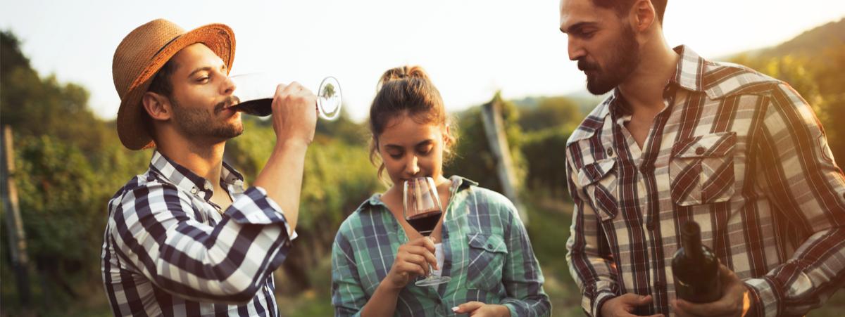 winecation