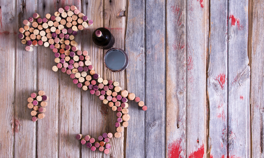 primato italia vini bio